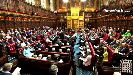 How the Lords works with the Commons to make a bill law | A day in the life