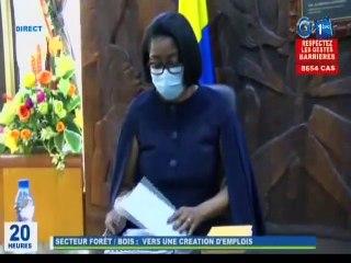 RTG / Présentation de la stratégie à mettre en oeuvre pour la diminution du taux de chômage au Gabon faite par le Ministre Lee White