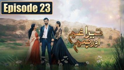 Tera Ghum Aur Hum Episode 23 HUM TV Drama 16 September 2020