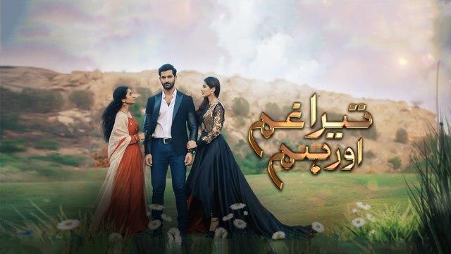 Tera Ghum Aur Hum Episode 24 Promo HUM TV Drama