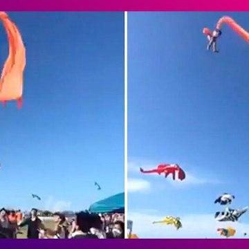 Taiwan Kite Festival: ঘুড়িতে আটকে মাঝ আকাশে ভাসছে ৩ বছরের শিশুকন্যা, দেখুন ভাইরাল ভিডিও