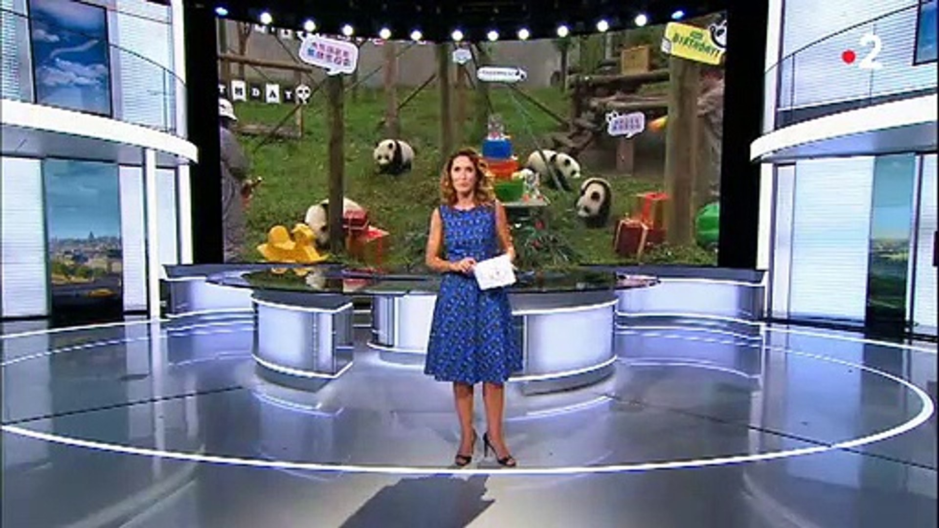 Regardez Le Dernier Journal De 13h Sur France 2 De Marie Sophie Lacarrau Avant Son Arrivee Sur Tf1 Pour Remplacer Jean Pierre Pernaut Video Dailymotion
