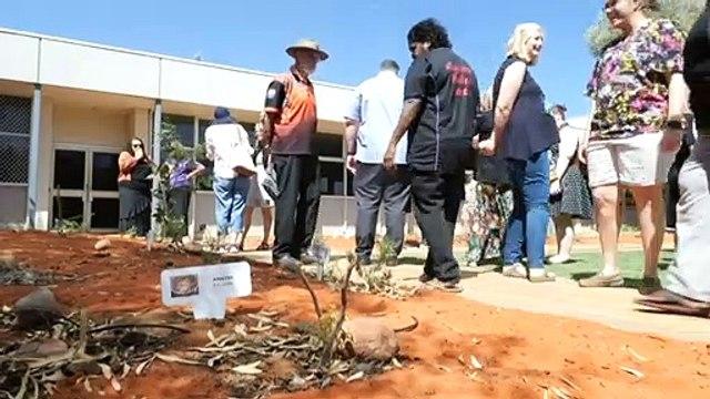 Alice Springs woman honoured with bush medicine garden