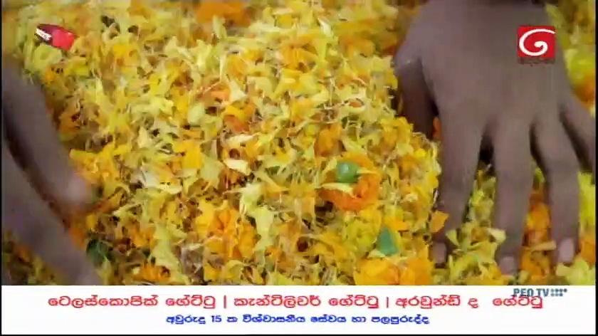 Pandith Rama 22-09-2020 Thumbnail