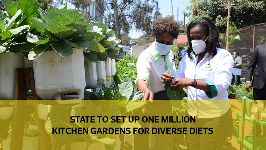 State to set up one million kitchen gardens for diverse diets