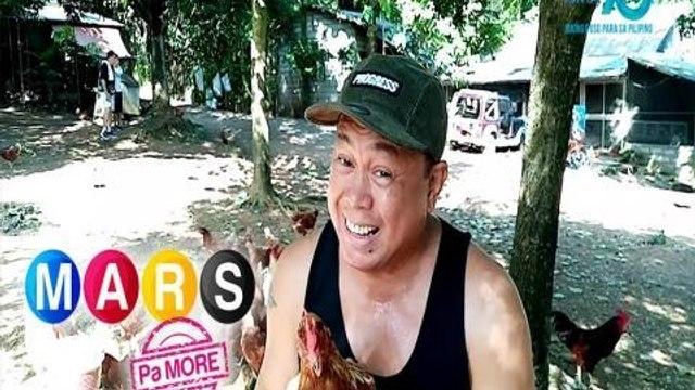 Mars Pa More: Mga manok na pula ni Dennis Padilla, kilalanin!