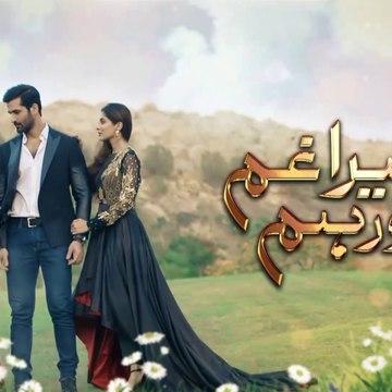Tera Ghum Aur Hum Episode 26 Promo HUM TV