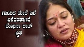 ಸುಳ್ಳು ಸುದ್ದಿ ಹಬ್ಬಿಸುತ್ತಿರುವವರ ಮೇಲೆ ಕೋಪಗೊಂಡ ಮೇಘನಾ ರಾಜ್ ಸರ್ಜಾ  | Filmibeat Kannada