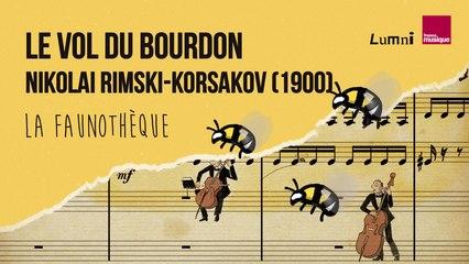 Rimsky-Korsakov : Le Vol du Bourdon - La Faunothèque