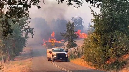 Numerous structures engulfed in flames as Zogg Fire sweeps through California towns of Ono and Igo