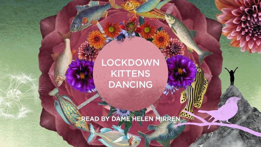 Amelia Warner - Lockdown Kittens Dancing