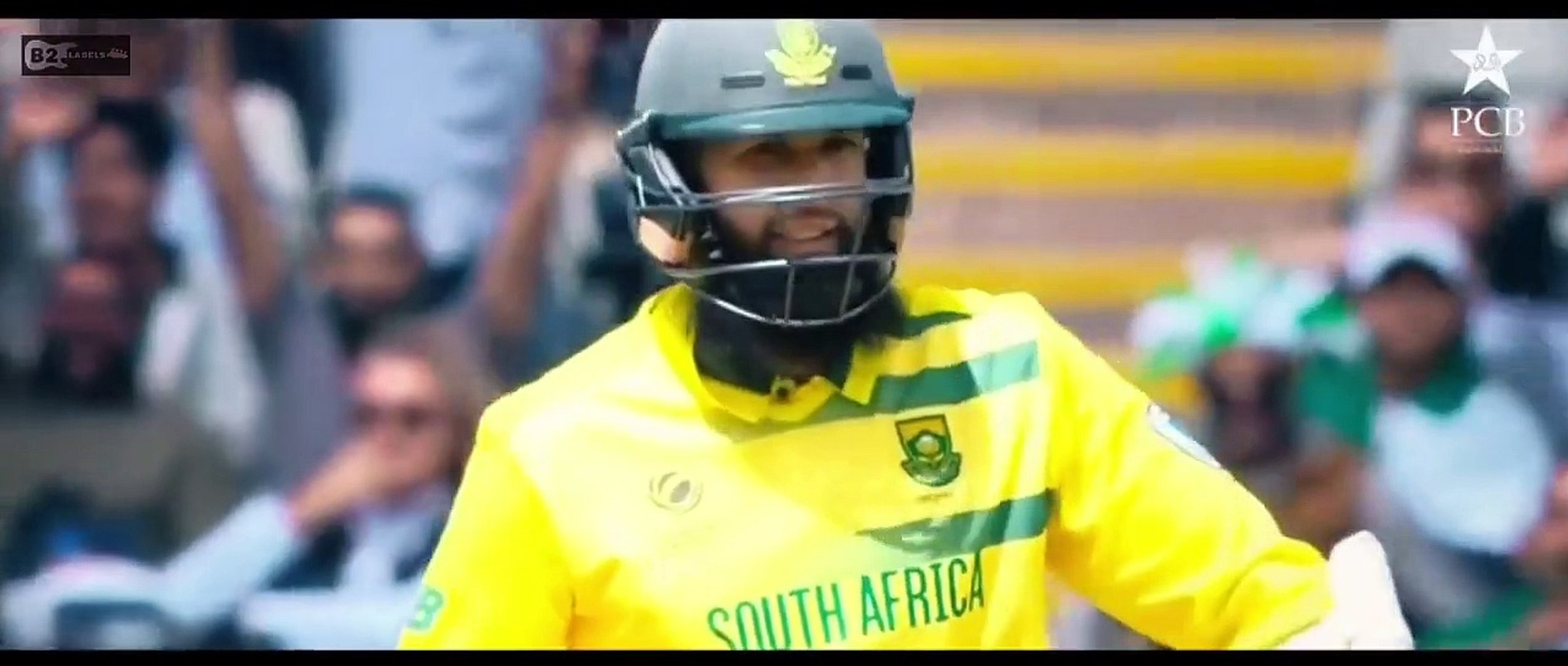 Dale Gi Dhamal - Mehmood J - Official Song- (ICC Cricket World Cup 2021) The Music World