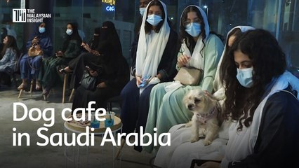 First dog cafe opens in conservative Saudi Arabia
