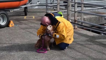 RNLI Dog rescue - Volunteers meet up with Poppy