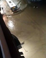 Maltempo, alluvione a Ventimiglia: l'autobus intrappolato dall'acqua in centro