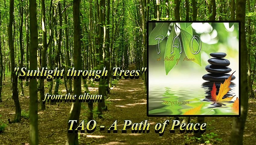 Wychazel - TAO-A Path of Peace - Sunlight through Trees