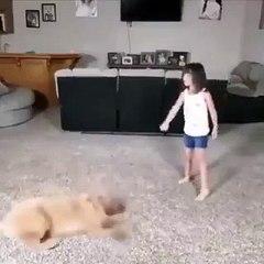 Une petite fille fait de la gymnastique avec son chien