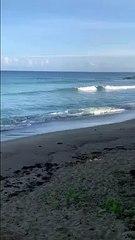 love bule sea VID ID - VIDID