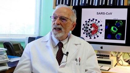 """Entrevista al virólogo Luis Enjuanes: """"Lo de Madrid me parece casi de retraso mental"""""""