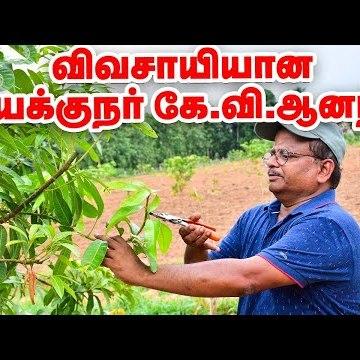 இயக்குநர் கே.வி.ஆனந்த்-ன் இயற்கை விவசாயம்! Director K.V.Anand Organic Farm