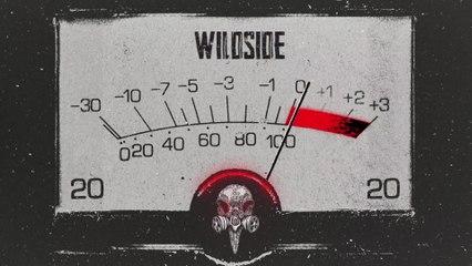 Tyler Bryant & The Shakedown - Wildside