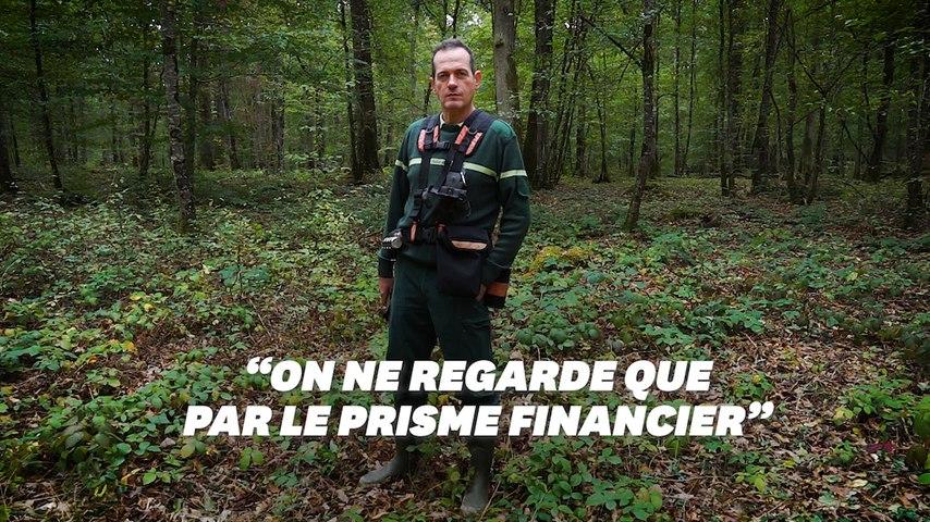 Pourquoi ce garde forestier s'inquiète pour sa profession et la forêt