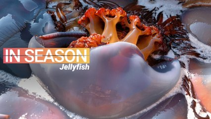 How Jellyfish is Eaten in China - In Season (E1S5)
