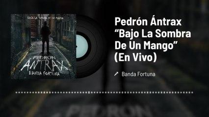 """Banda Fortuna - Pedrón Ántrax """"Bajo La Sombra De Un Mango"""""""