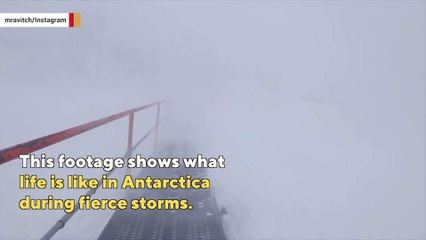 What's it like to walk in Antarctica amid 120 mph wind gusts