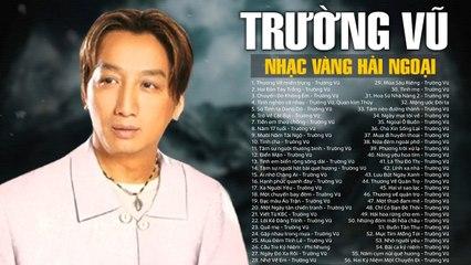 Liên khúc THƯƠNG VỀ MIỀN TRUNG - TRƯỜNG VŨ  Khóc Nghẹn Ngào Khi Nghe LK Nhạc Vàng Về Miền Trung