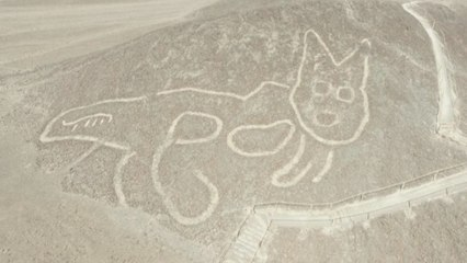 2,000-year-old cat found etched into Peru hillside
