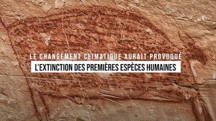 Le changement climatique aurait provoqué l'extinction des premières espèces humaines