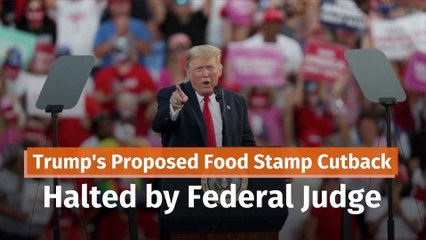 Trump, A Judge, And Food Stamps