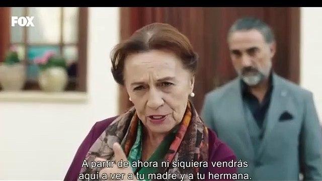el fenix parte 2 capitulo 14 subtitulos español