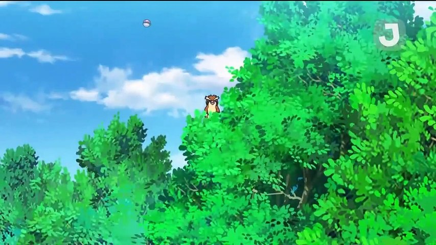Pokemon Saison 23 Épisode 20 - La naissance d'un rêve !