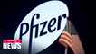 Pfizer urges patience in COVID-19 vaccine late-stage trial