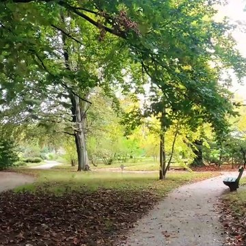 A Walk Through a Lovely 19th Century Botanical Garden in Zagreb, Croatia