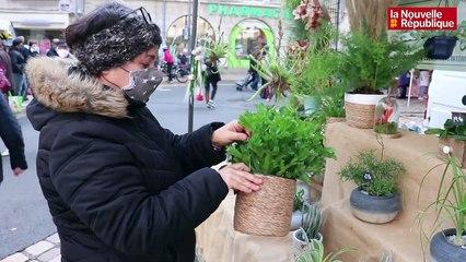 VIDEO. Reconfinement : une fleuriste de Veuzain-sur-Loire s'insurge contre les grandes surfaces
