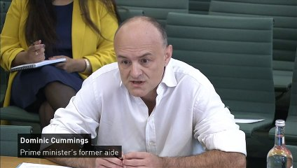 Dominic Cummings was assured of 'full plans' for pandemic