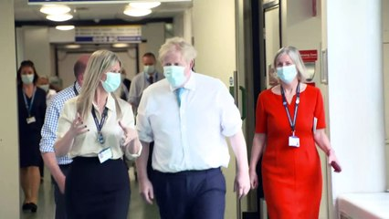 Johnson says govt 'did everything we could' to protect care