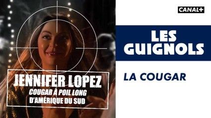 La cougar - Les Guignols - CANAL+