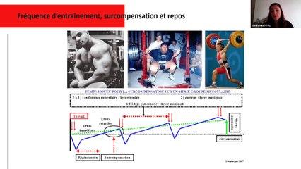 Entraînement de la force pour le judo - Alix Renaud-Roy