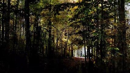 5 Real-Life Slenderman Sightings Caught on Camera-