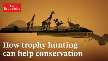 Trophy hunting: how it can protect Africa's wildlife