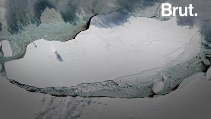 This giant glacier is on a collision course with a British overseas territory