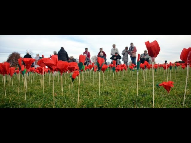 Belgium on Holiday What is Armistice Day