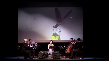 Anadolu Quartet & Mehtap Arslanargun - Sarı Gylain (Sarı Gelin)