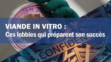 Viande in vitro : ces lobbies qui préparent son succès