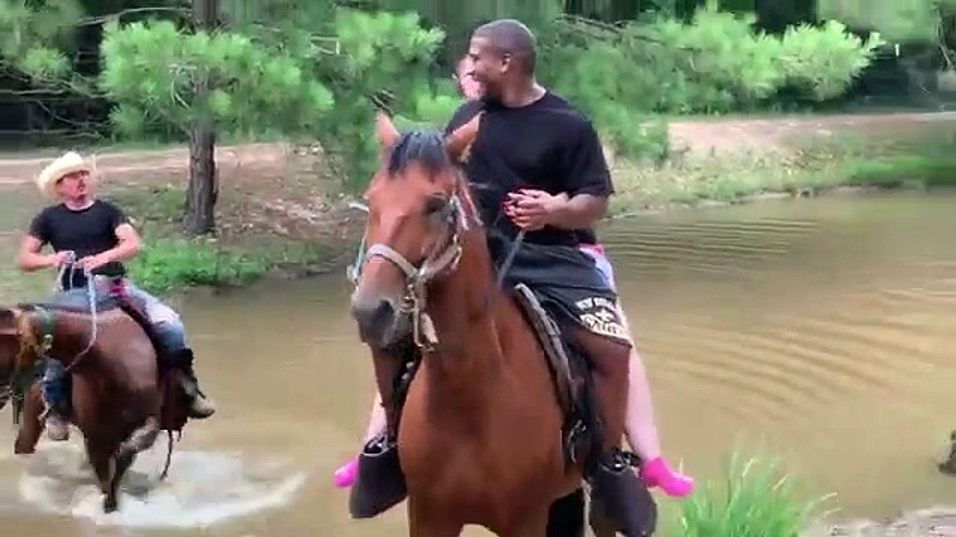This horse had enough of people riding his back