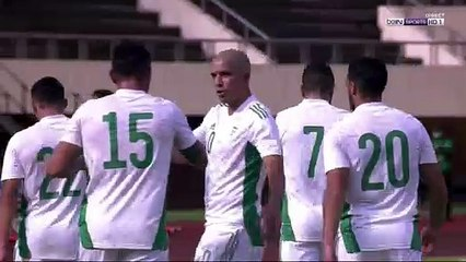 Zimbabwe 2-2 Algérie
